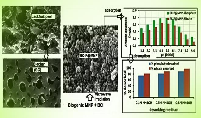 कटहल के छिलके से बने नैनो-कम्पोजिट घटा सकते हैं जल-प्रदूषण