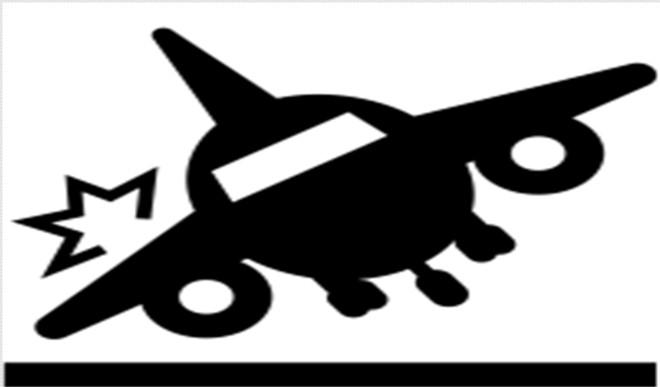 कैलिफोर्निया विमान हादसे में भारतीय मूल के चिकित्सक समेत दो लोगों की मौत